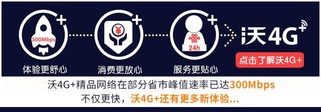 4G+介绍引导板块