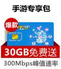 4G+流量王(赠30GB)