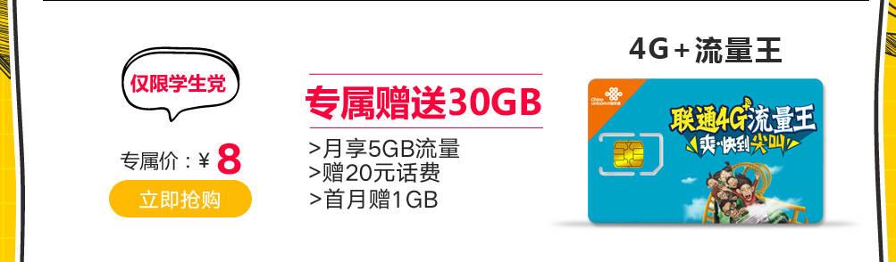 30GB流量王