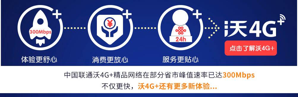 4G+介绍引导