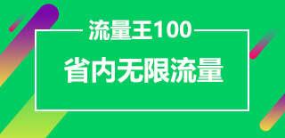 流量王100