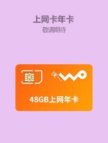48GB年卡
