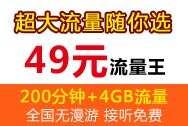 49元流量王