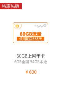 60GB年卡A