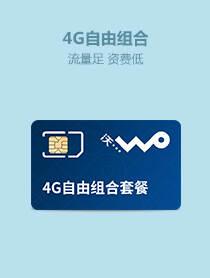 4G自由组合