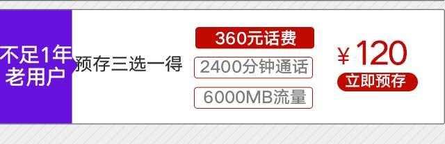 4G120元