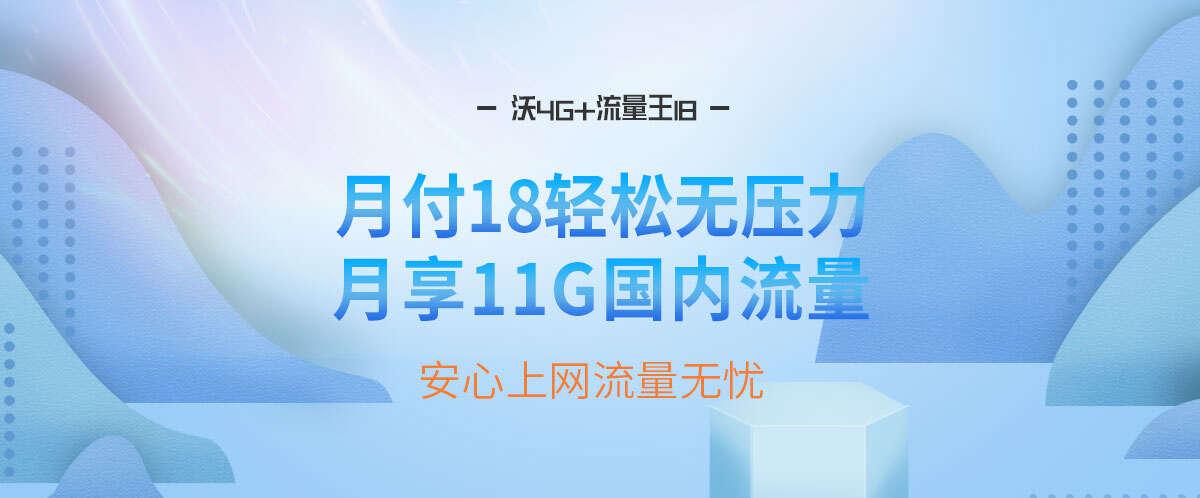 沃4G+流量王18