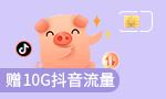 4G全国流量王