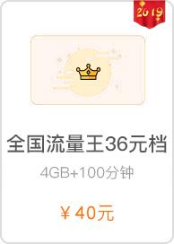 4G全国流量王36元档