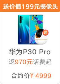 华为P30 Pro (8+128)